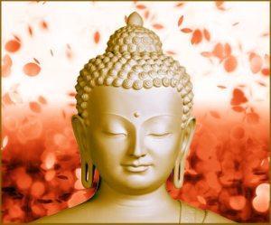 buddhaforhomepage2